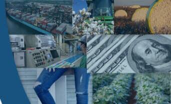 Abrapa publica mais um Boletim de Inteligência de Mercado do algodão