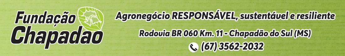 FUNDAÇÃO CHAPADAO 17