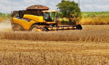 Com quase 10% colhida e ajuste para menor na área, safra da soja deve ultrapassar 11,2 milhões de toneladas